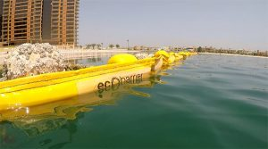 How Ecocoast can help prepare for jellyfish season