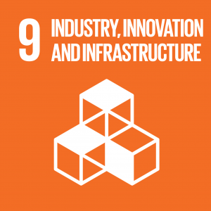 CONTRIBUTING TO THE UNITED NATIONS GLOBAL GOALS – the 17 Sustainable Development Goals (SDGs), SDG 9