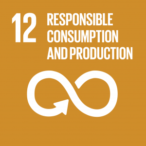 CONTRIBUTING TO THE UNITED NATIONS GLOBAL GOALS – the 17 Sustainable Development Goals (SDGs), SDG 12