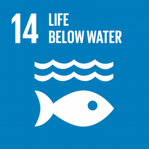 CONTRIBUTING TO THE UNITED NATIONS GLOBAL GOALS – the 17 Sustainable Development Goals (SDGs), SDG 14