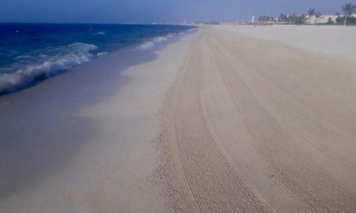 Beach cleaning works at Al Zorah