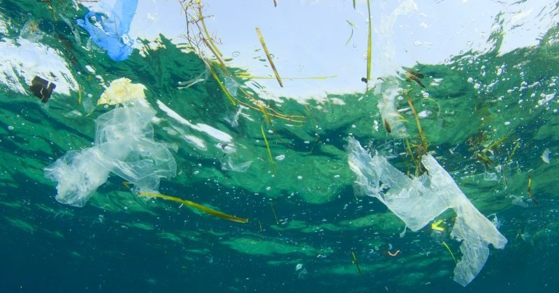 How to manage marine pollution?