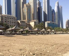 The Westin, UAE, Beach Nourishment