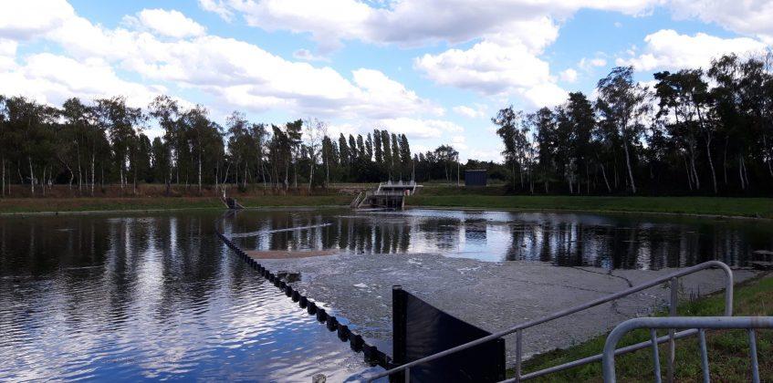 Containing Water Weeds, Belgium, Bolina Booms
